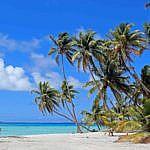 Palmerston (Cookinseln) und Niue